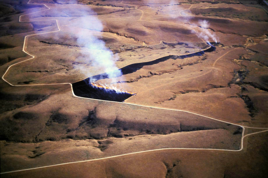 Photograph entitled Back-firing for a controlled prairie fire, Kansas Flint Hills