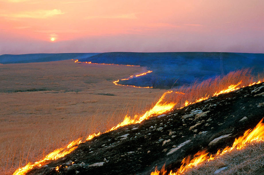 Photograph entitled Spring range burn, Kansas Flint Hills