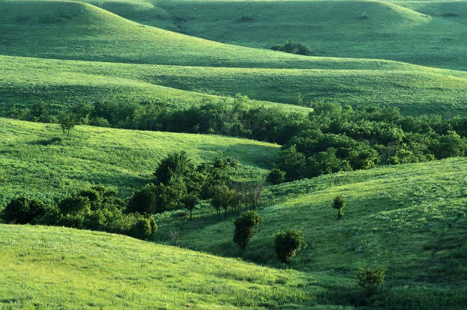 Photograph entitled Flint Hills in summer
