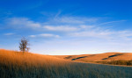 Photograph entitled Winter light, Kansas Flint Hills