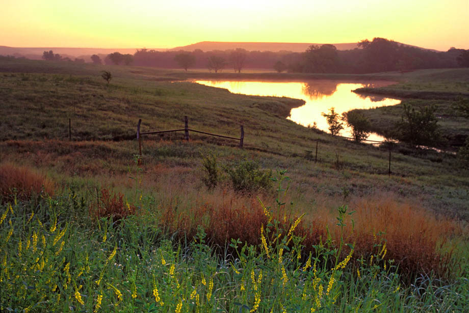 Photo entitled Morning on the prairie