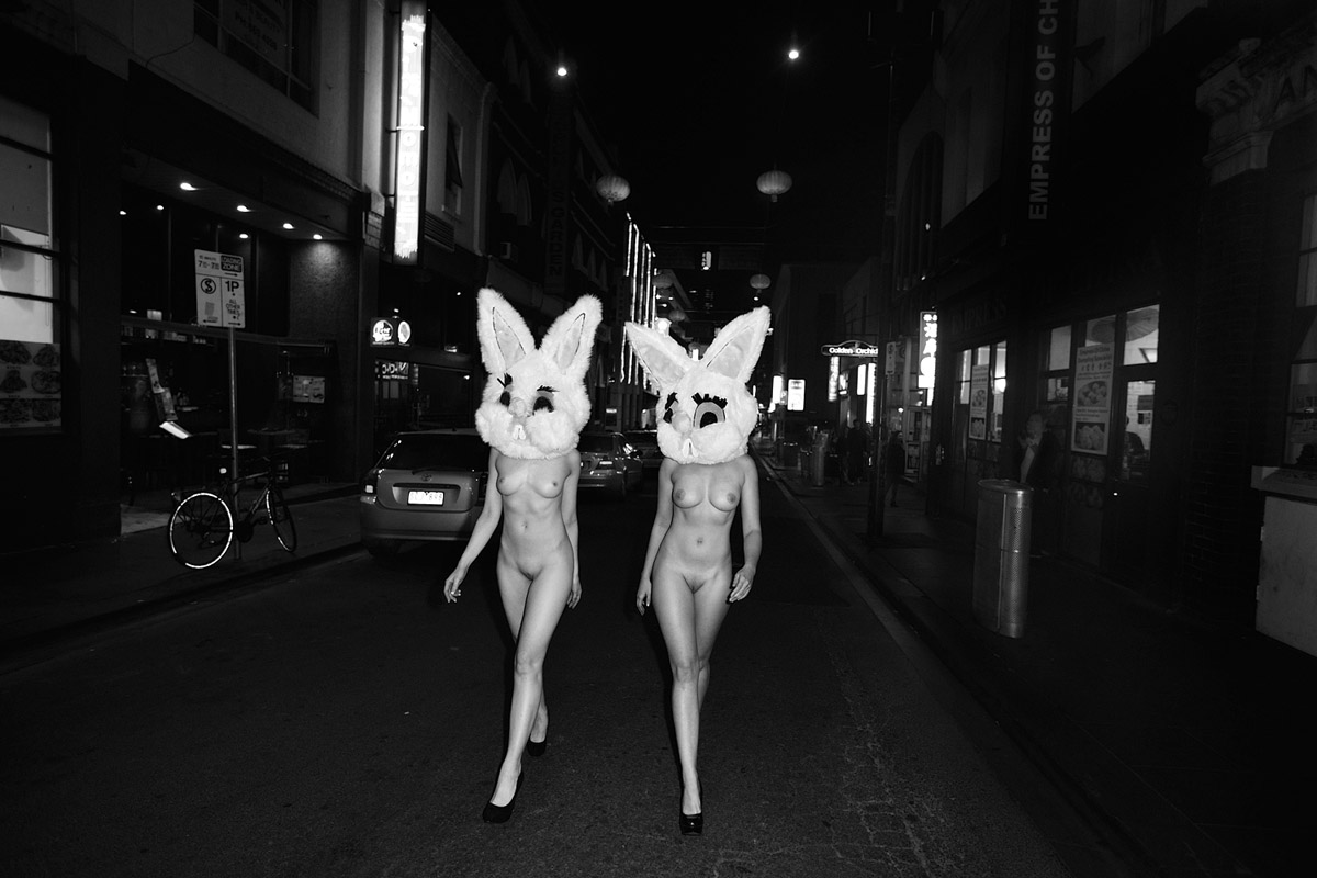 Bunnies14-08_20209