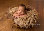 Newborn Photography London