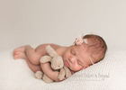 Newborn-Photos_16