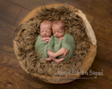 Newborn-Photos_57