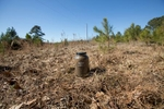 Floyd, Alabama -  02-17-2016 - Soil collection sites in southern Alabama for a project undertaken by The Equal Justice Initiative. This patch of soil is where Berney, was hung for allegedly killing a white farmer, John Christizberg, Nov. 10, 1912.  - Photo By Ozier Muhammad