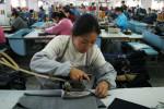 textile004lr