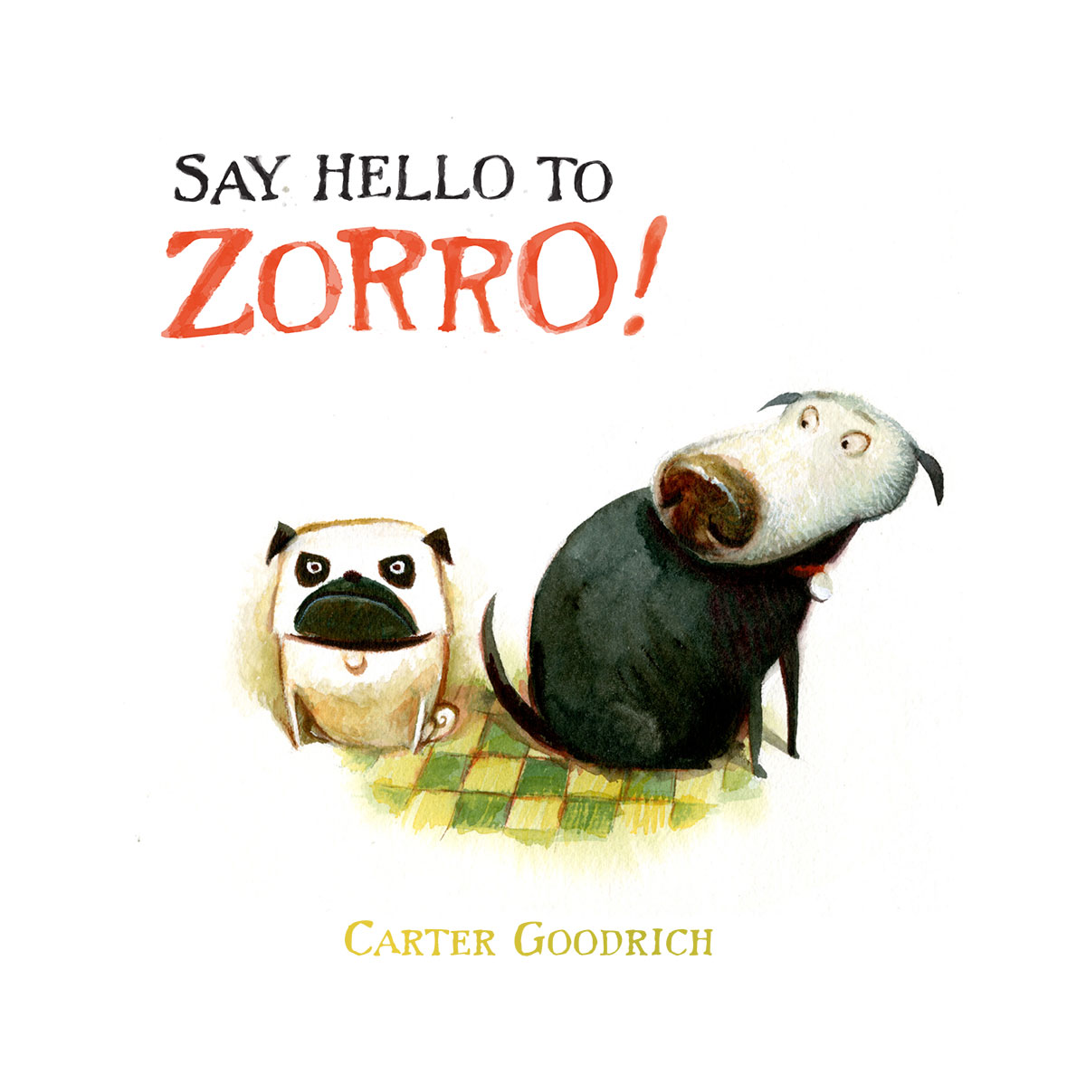 Say-Hello-to-Zorro-1