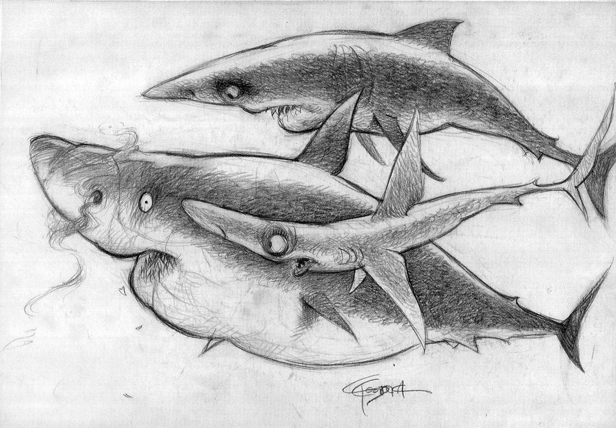 nemo-Sharks1-429