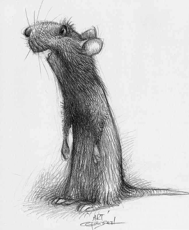 rat1-452