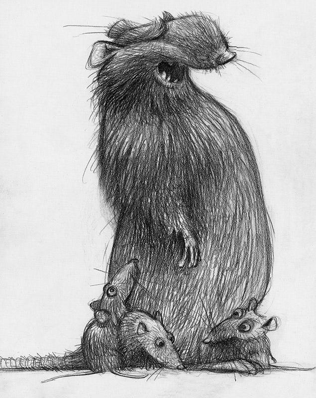 rat2-453
