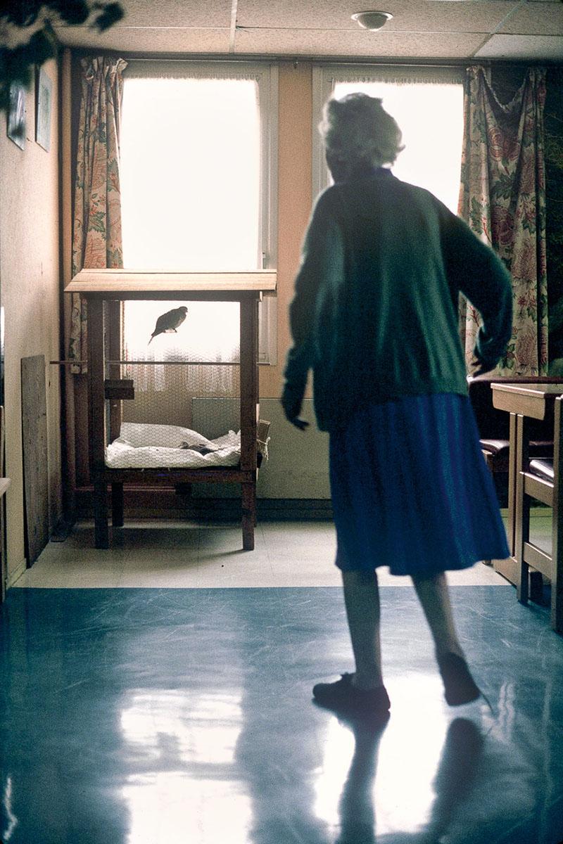 Paul Brousse geriatric center in 1993