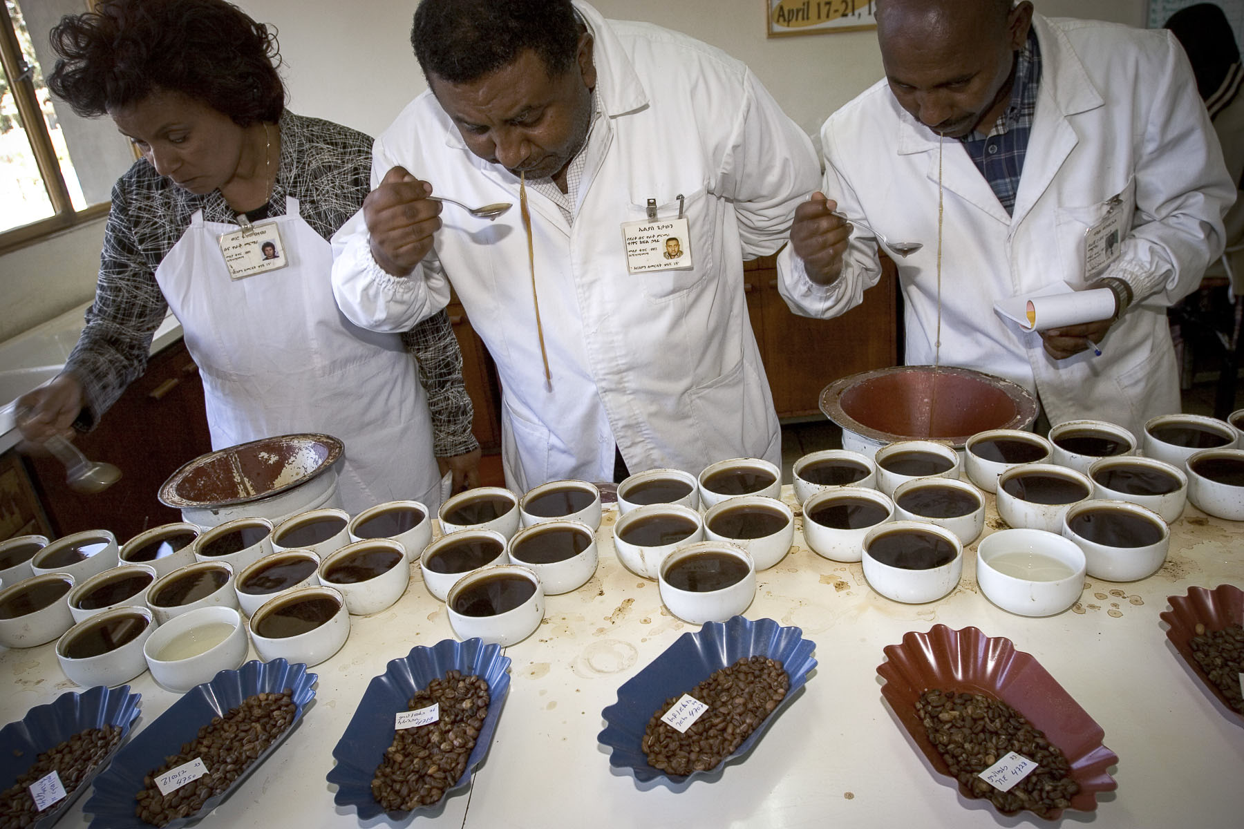 Men testing the quality of coffee for the Coffee and Tea Authority in November 2004