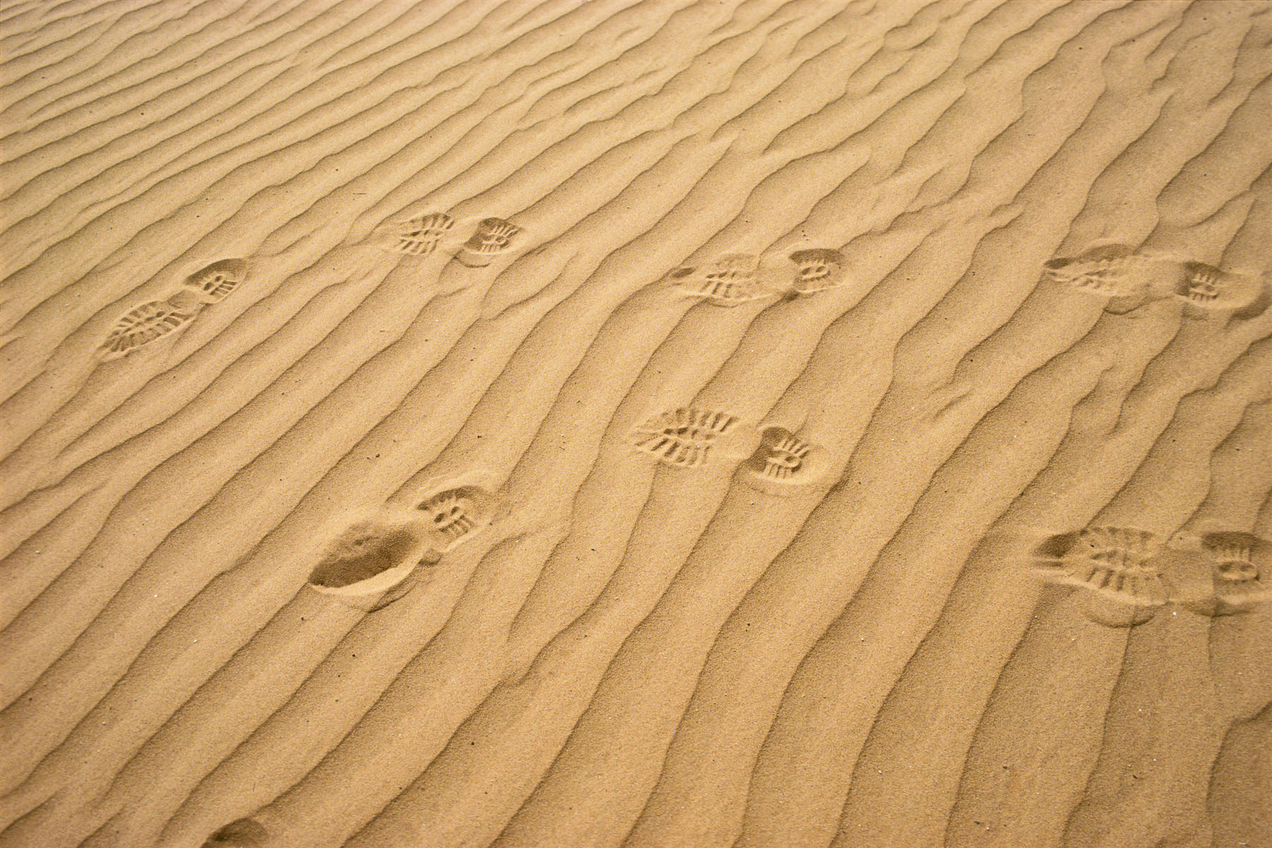 French Foreign Legion soldiers' footprints in January 1991