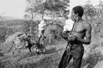 Man carrying a fighting rooster by Jean-Rabel in August 1986