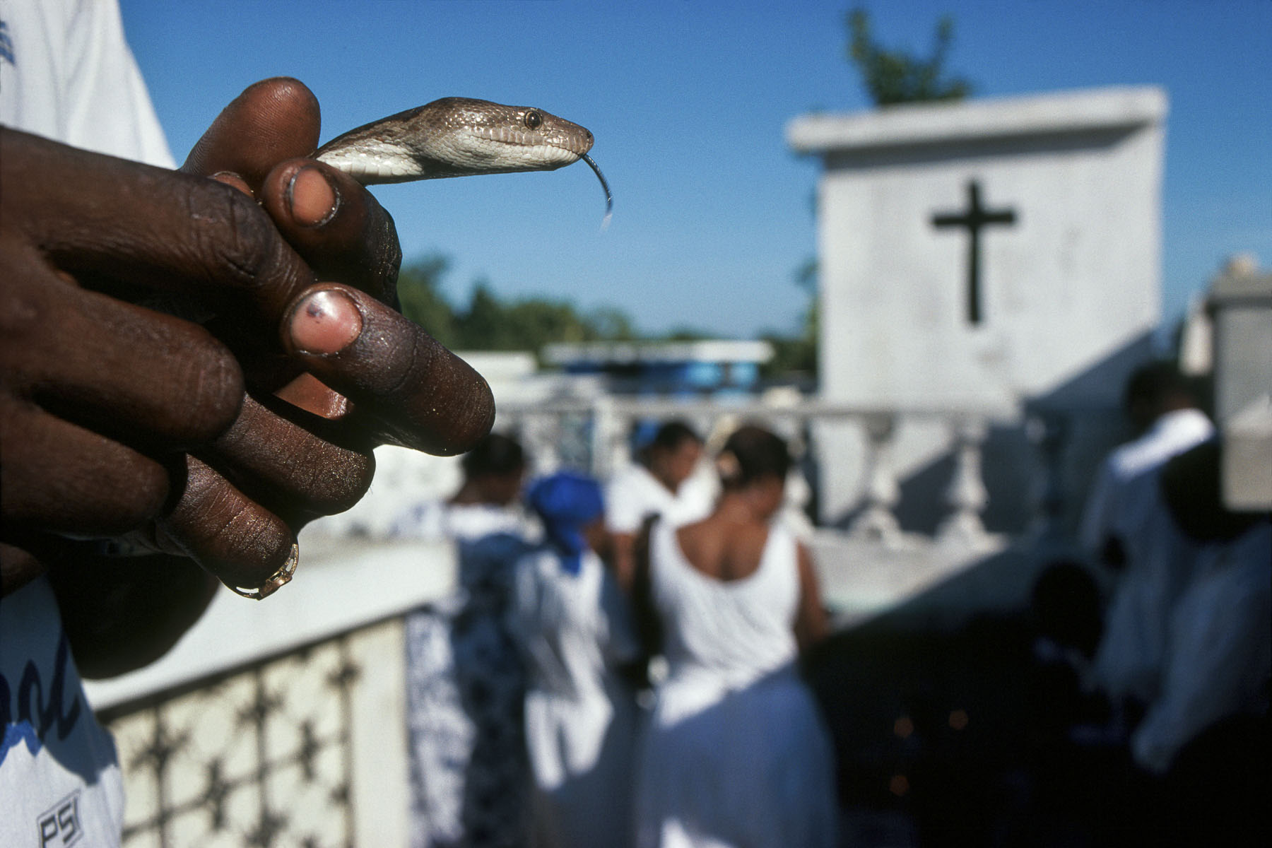 On All Saints' Day, the Guedes celebration. The voodoo followers gather in the cemeteries around the Cross of Baron Samedi, loa (spirit) of the dead in November 1995