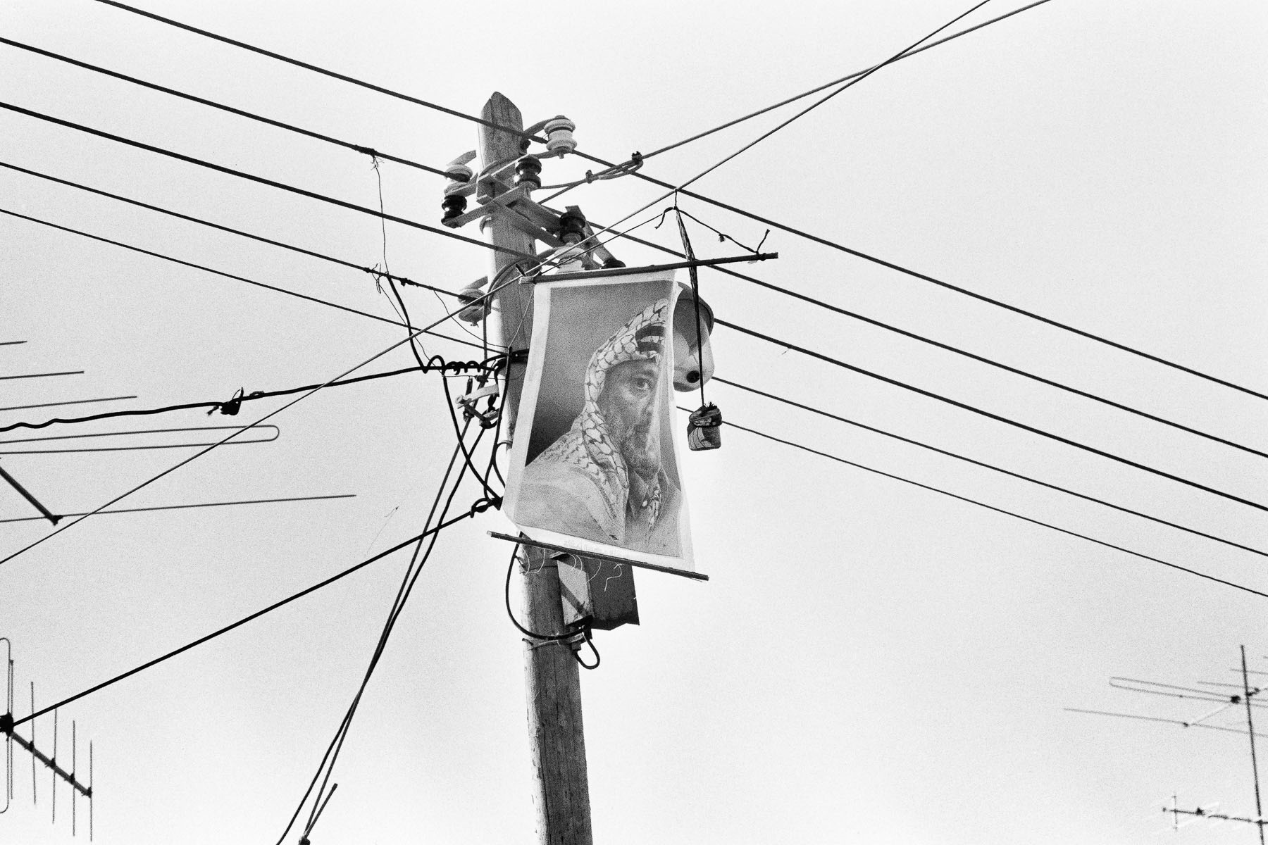 Yasser Arafat's portrait hung on electric wires in January 1988