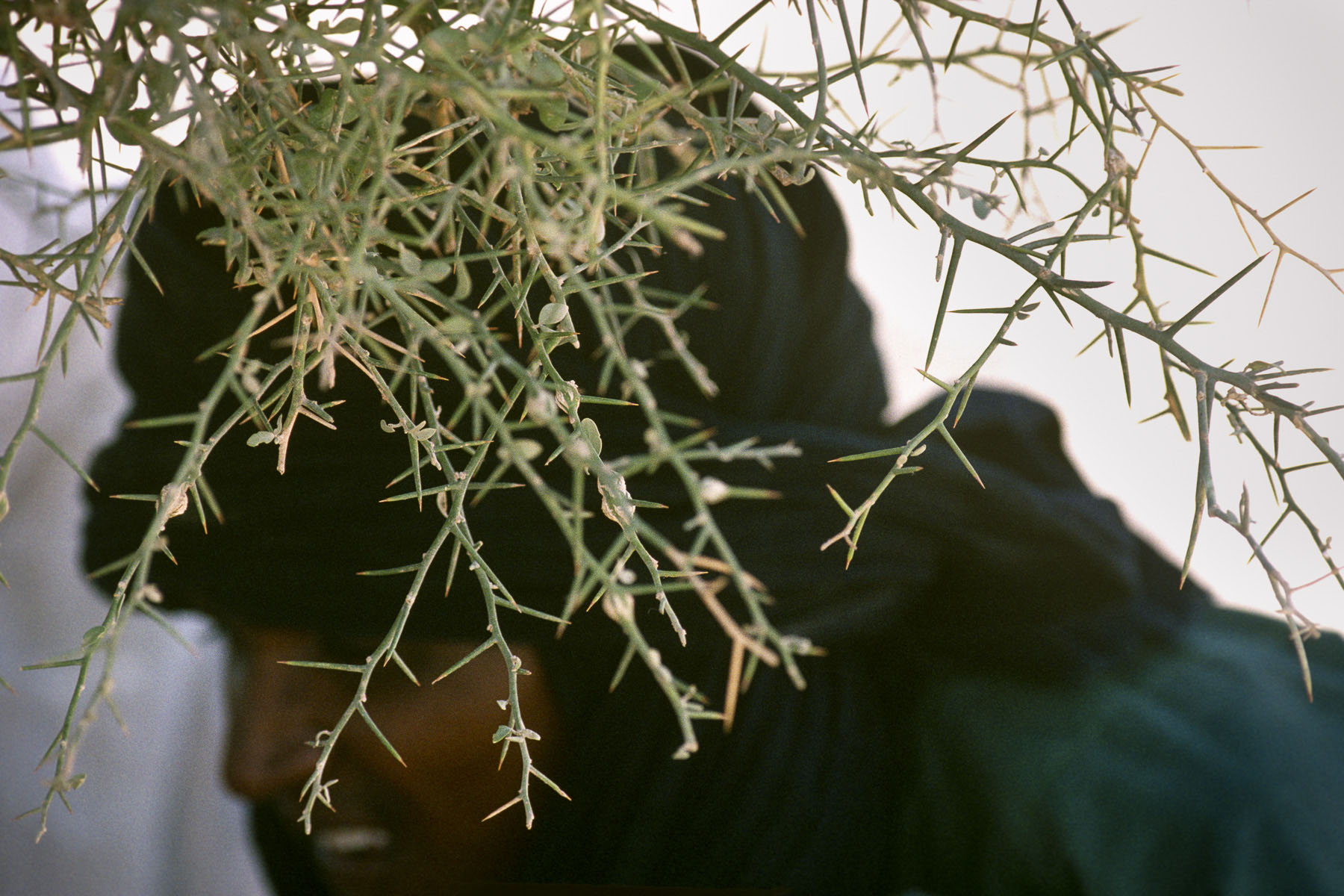 Old Tuareg man in Timbuktu in 1995