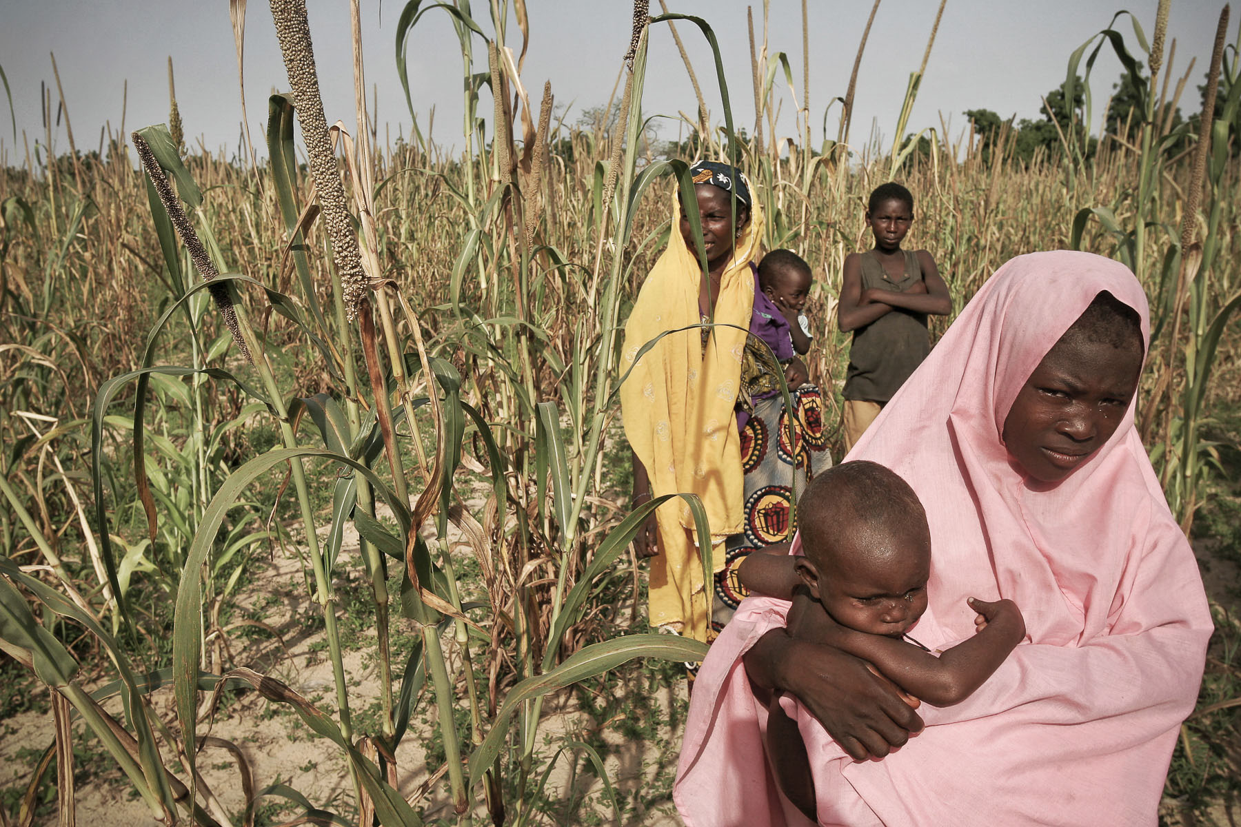 Women in a millet field in September 2005