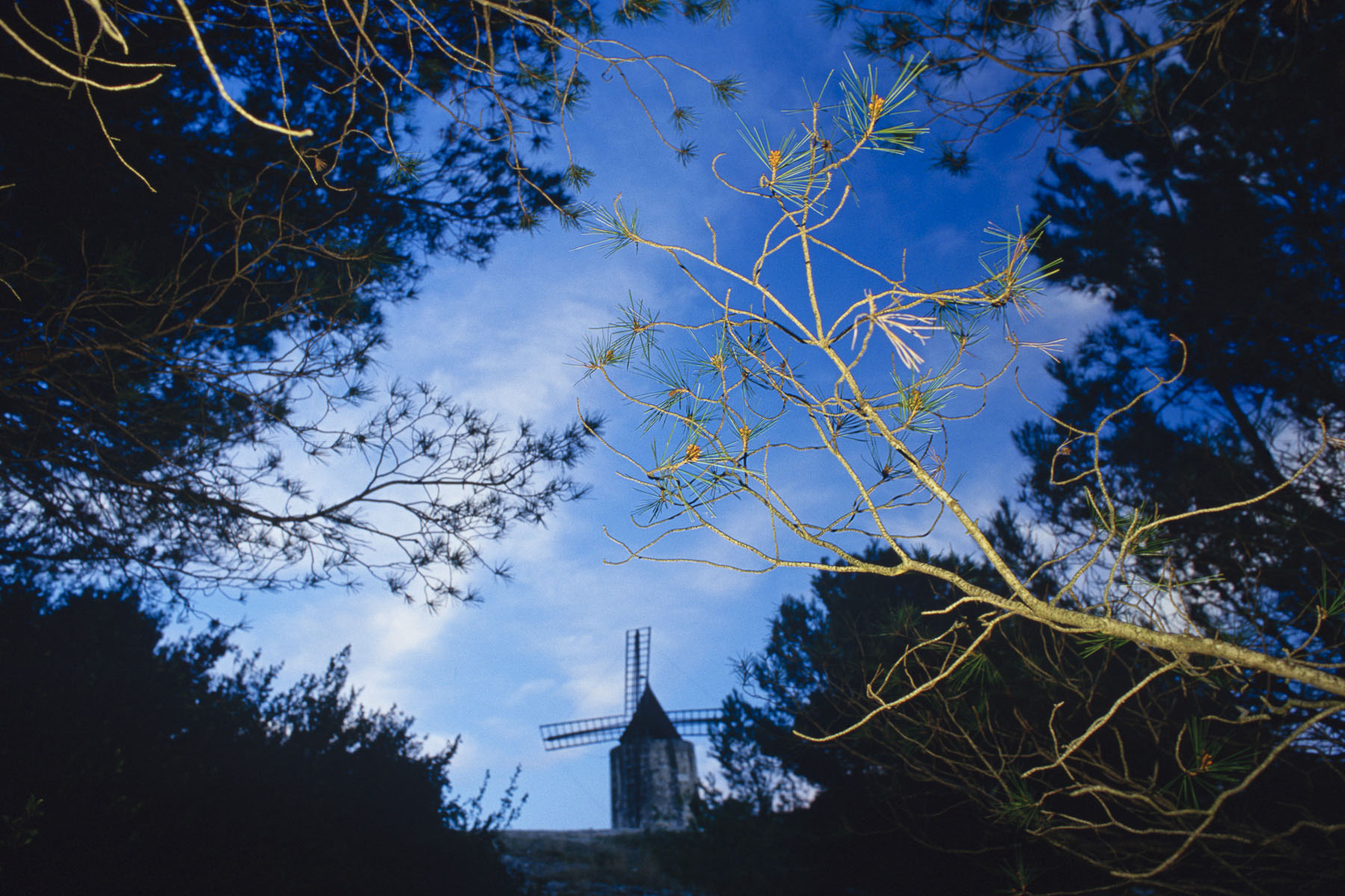 Daudet's windmill. 2000