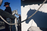 Gardians preparing their horses. 2000