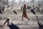 A young Somali refugee crosses a field filled with marabous storks in July 1992