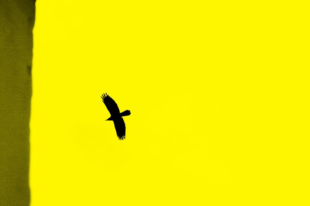 fine-art-photography-black-and-white-color-photographer-adrian-hancu-moldova-023