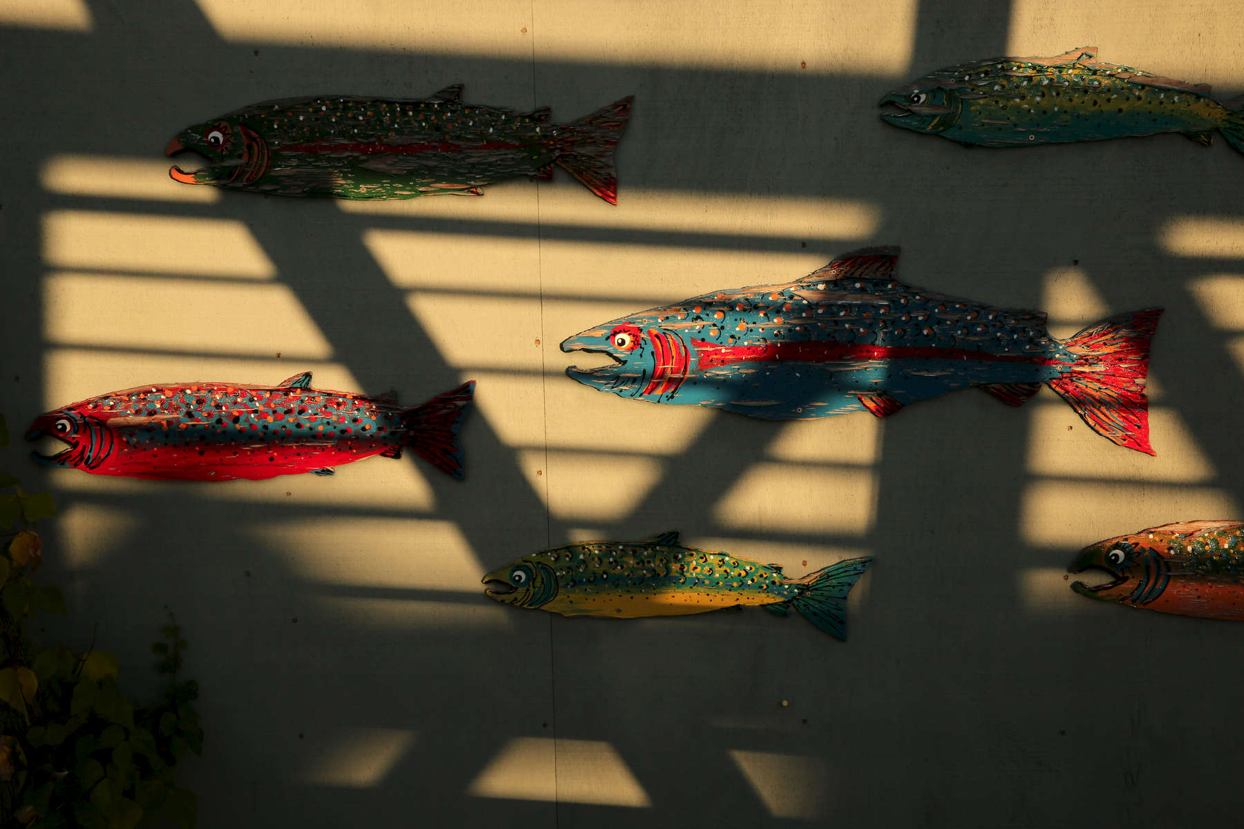 Painted salmon adorn the wall of a fish shop.