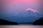 The setting sun illuminates Mount Baker on the ferry ride from Friday Harbor to Anacortes.