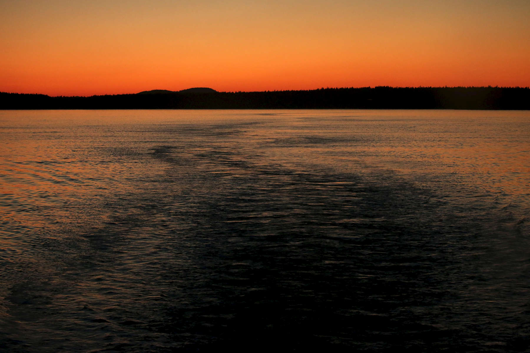 The setting sun illuminates wake in the water on the ferry ride from Friday Harbor to Anacortes.