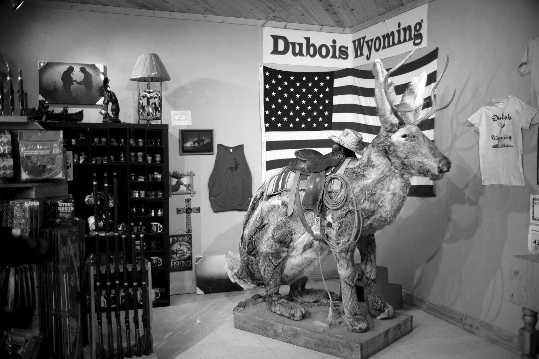 Wyoming06