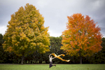 Woman runs with yellow fabric in the fall in Shelburne between two maple trees. by Vermont photographer Judd Lamphere