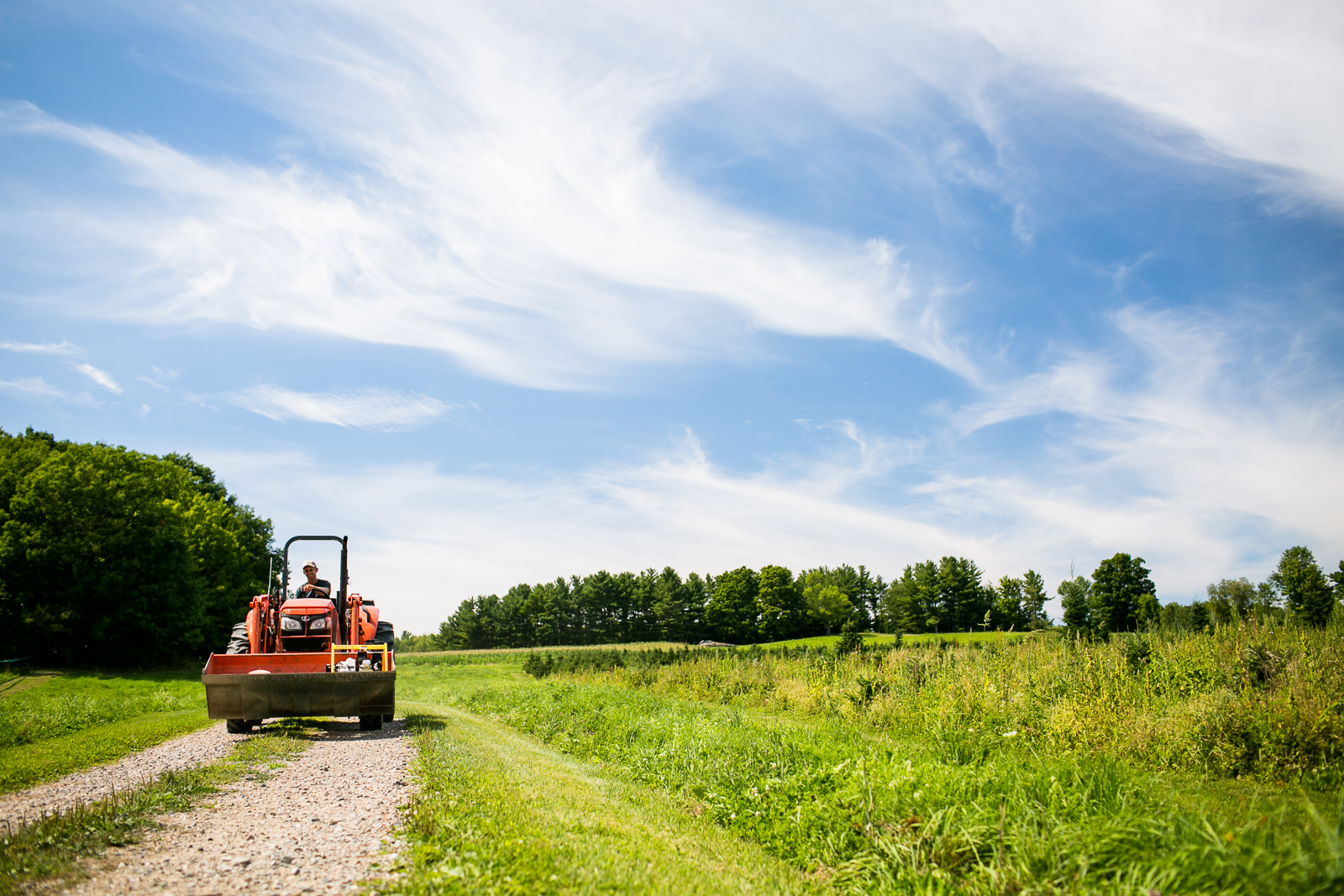 Mike Isham drives his tractor at Isham Family Farm, a diversified farm in Williston, Vermont, on Tuesday, August 9, 2016.