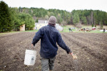 Biodynamic farming at Heartbeet Lifesharing, Hardwick, Vermont.