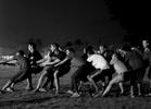 University of Washington boxing team tryout