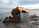 Hunting for geoduck, Hartstine Island, WA.