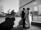 Wurzer_Weddings_0252