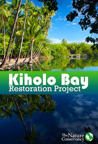 Kiholo-Bay-Poster