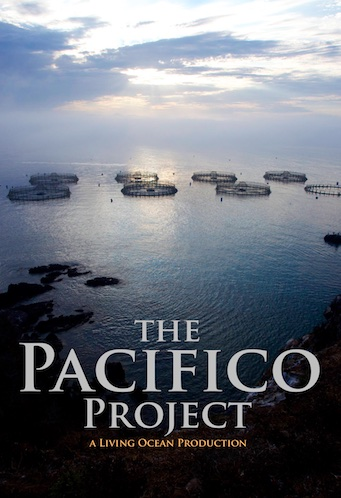 Pacifico-Project-Poster