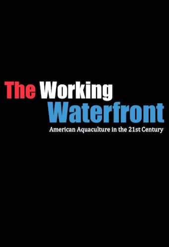 THE WORKING WATERFRONT - 2016