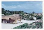 Phelan_1968-70Vietnam_0040