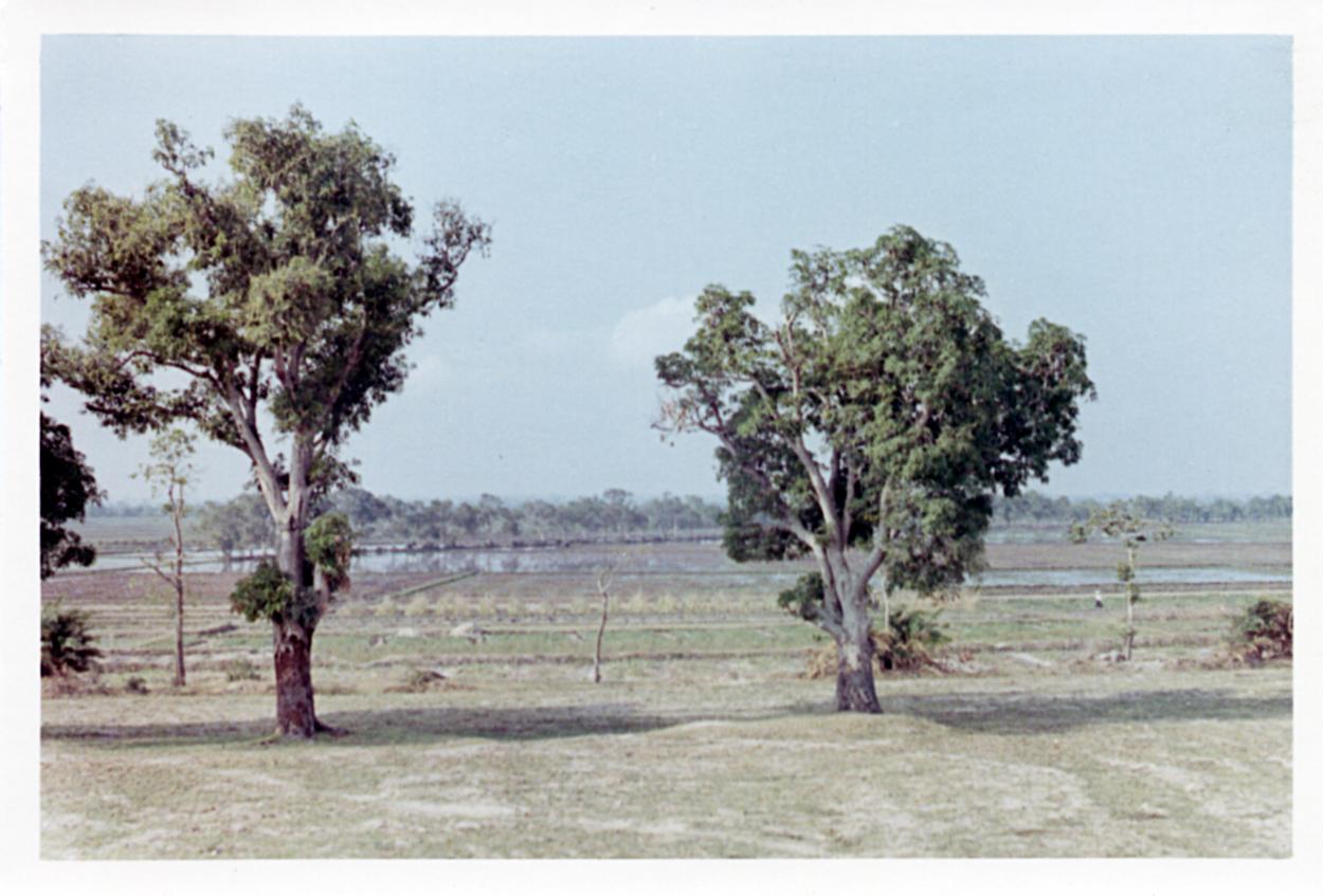 Phelan_1968-70Vietnam_0100