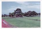 Phelan_1968-70Vietnam_0135