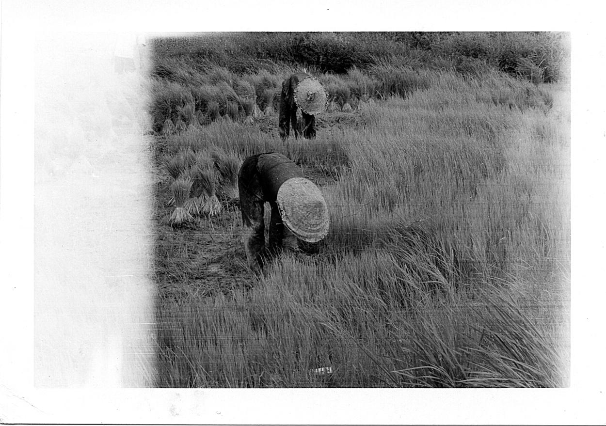 Phelan_1968-70Vietnam_0157