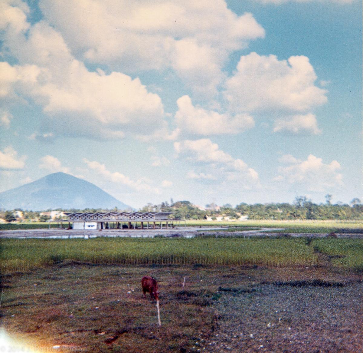 Phelan_1968-70Vietnam_0459