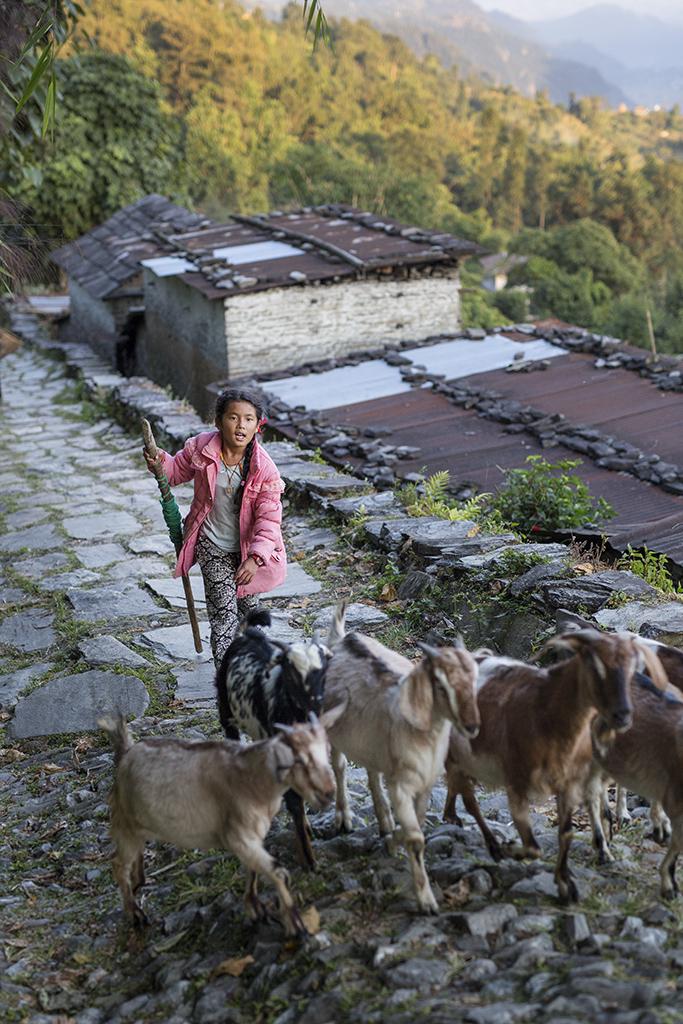 Nepal, 2017