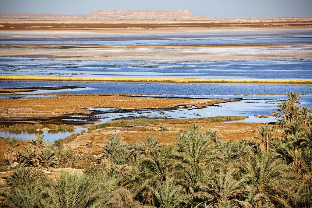 Siwa Oasis, Egypt, 2010