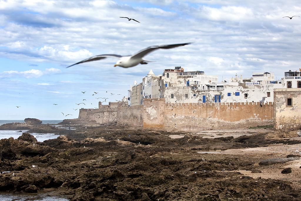 Essaouira, Morocco, 2012