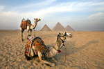 Pyramids of Giza, Egypt, 2013
