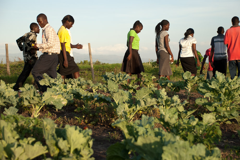 Graduate STARS walking among the cabbage patches on the St. Luke's premises. As they continue to pursue higher education, let's see where they are, how they lead, and how they engage with their communities in the coming years.